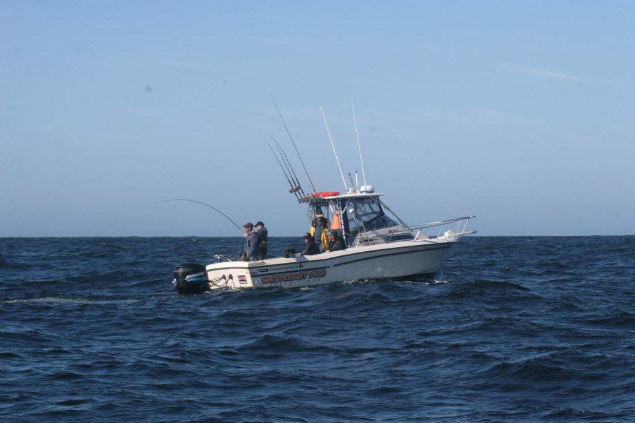 WestCoastFish0147