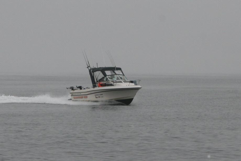 WestCoastFish0553