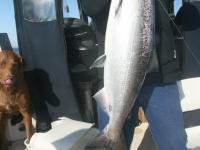 WestCoastFish0198