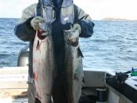 WestCoastFish0353