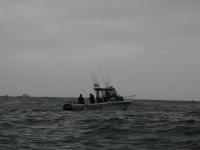 WestCoastFish0504