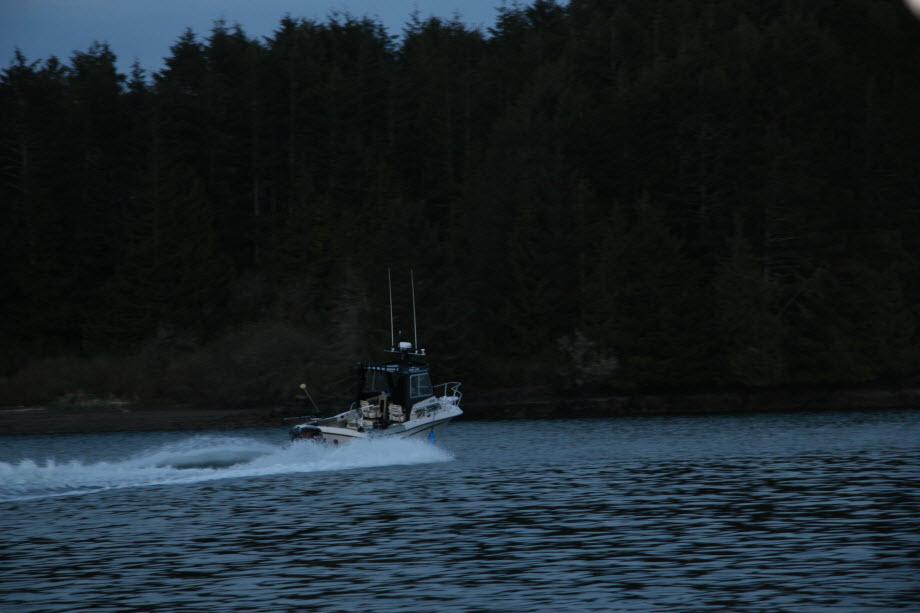 WestCoastFish0652
