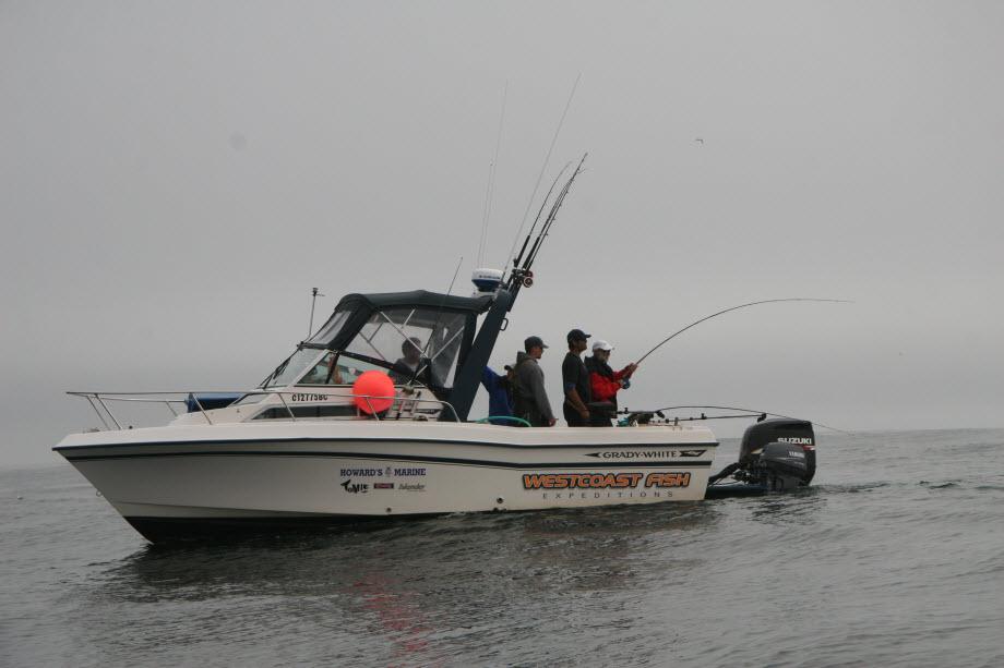 WestCoastFish0711