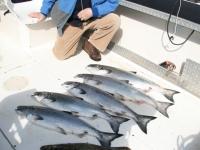 WestCoastFish0624