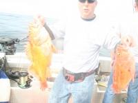 WestCoastFish1014