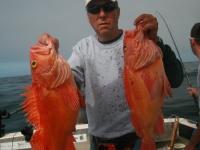 WestCoastFish1017