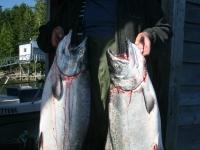 WestCoastFish1030