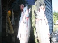WestCoastFish1031