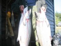 WestCoastFish1032