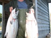WestCoastFish1033
