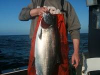 WestCoastFish1044