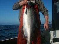 WestCoastFish1045