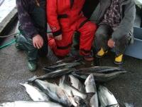 WestCoastFish1075