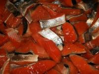 WestCoastFish1084