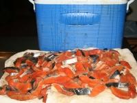 WestCoastFish1087