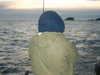 WestCoastFish1104