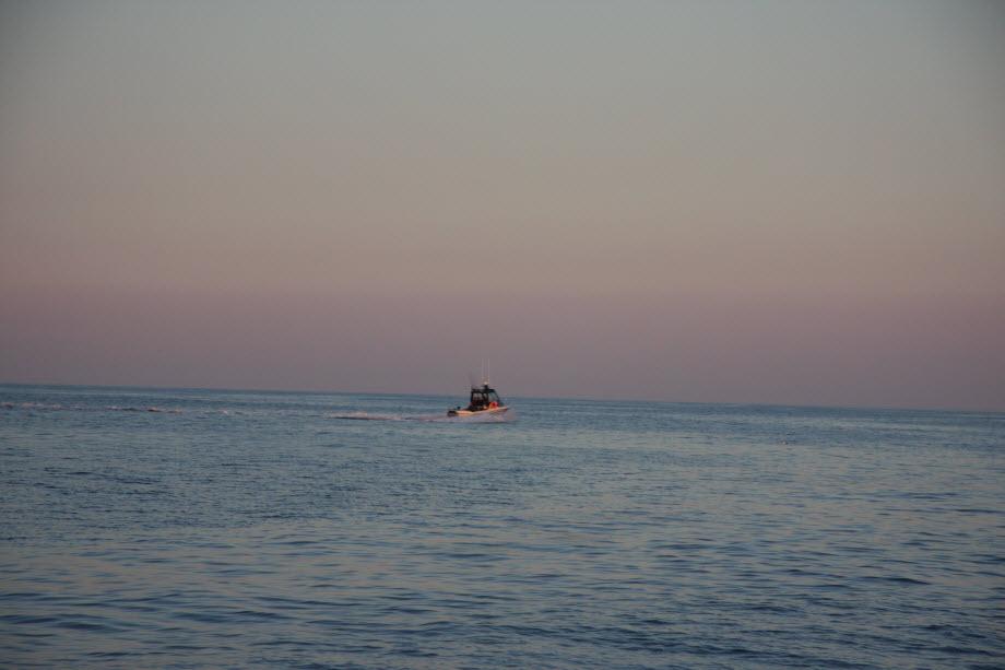 WestCoastFish1541