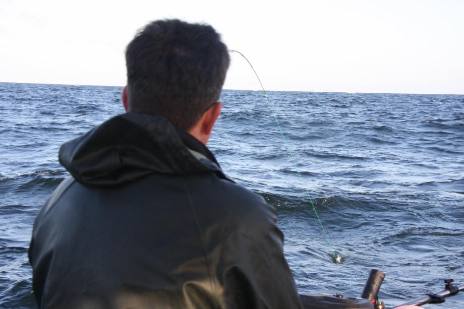 WestCoastFish1730