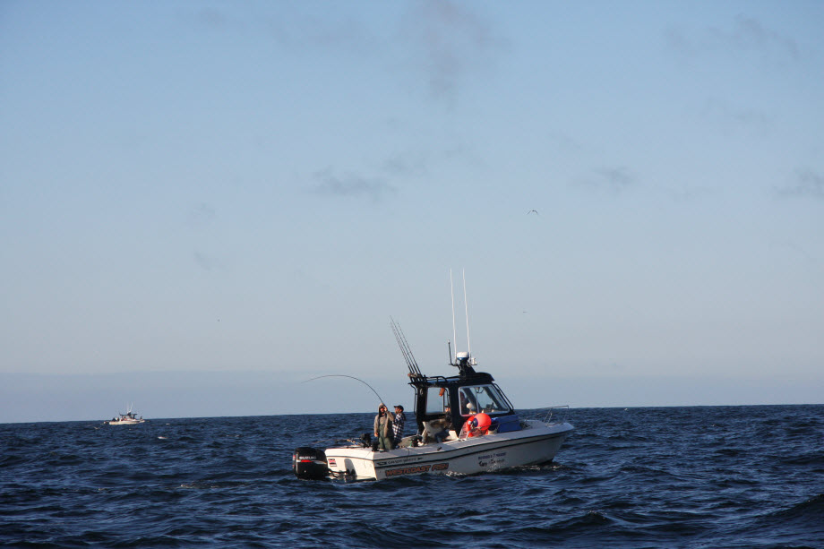 WestCoastFish1747