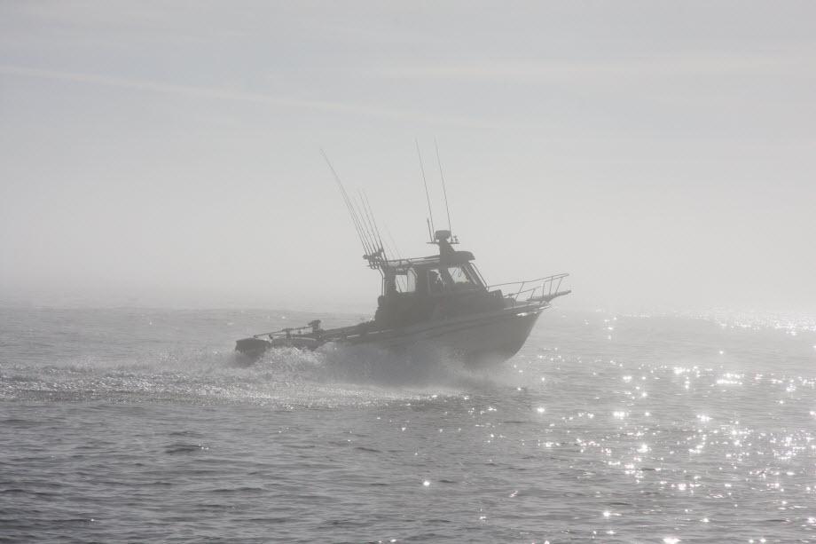 WestCoastFish2050