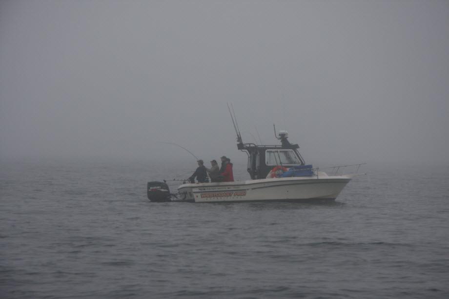 WestCoastFish2215