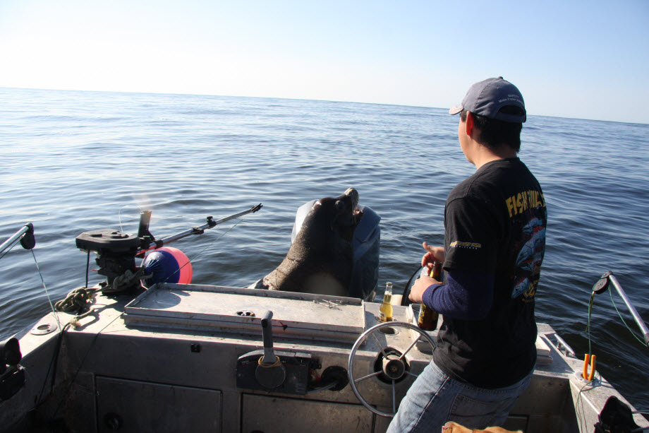 WestCoastFish2735