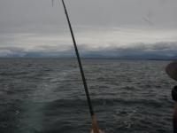 WestCoastFish1234