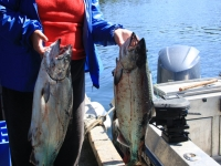 WestCoastFish1562