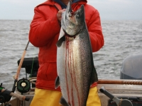WestCoastFish1564