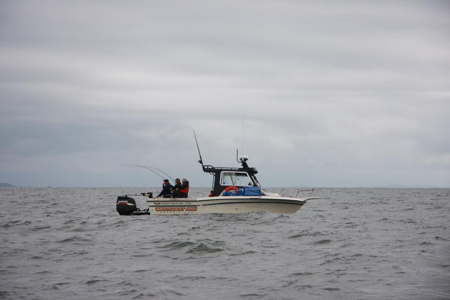 WestCoastFish3941