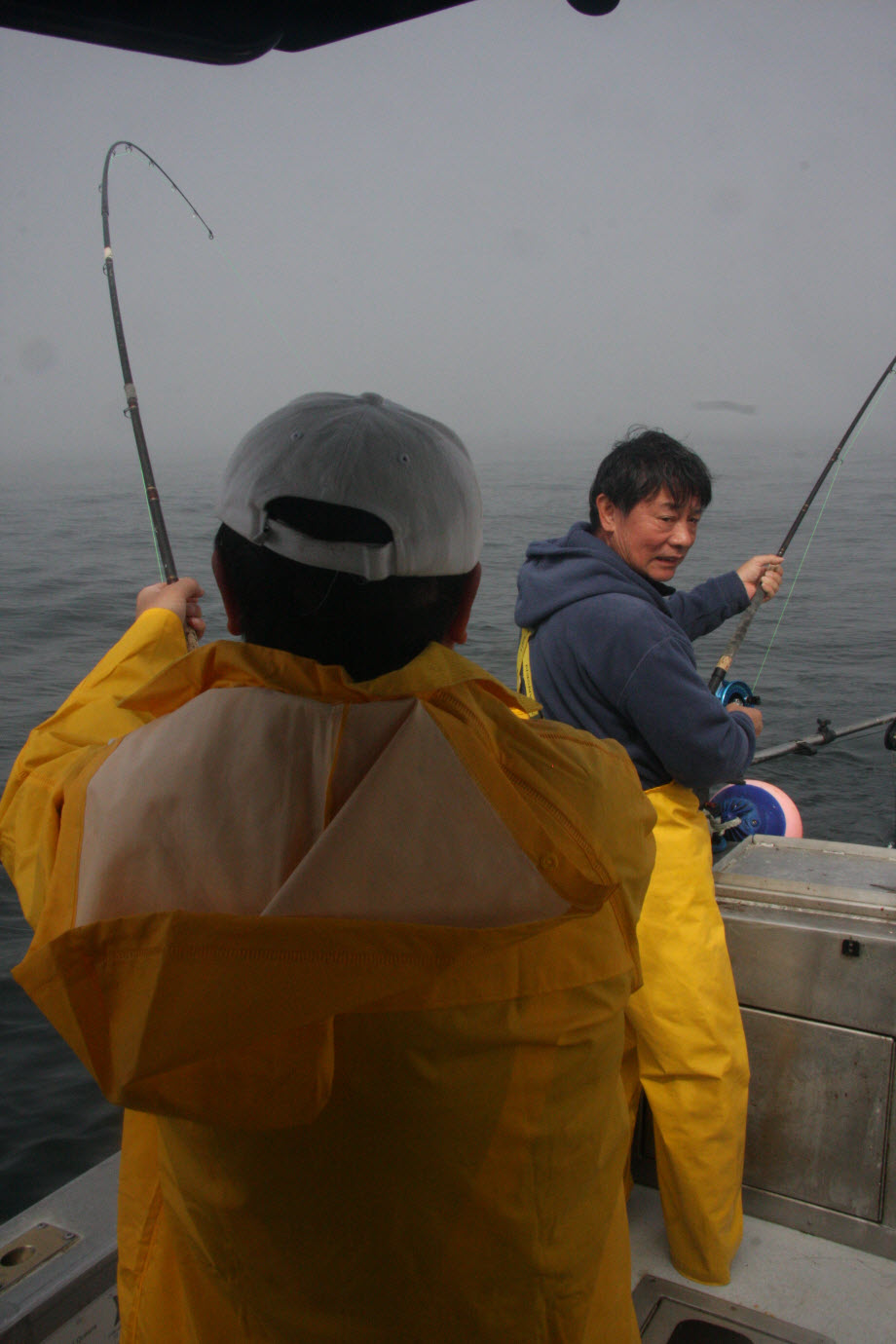 WestCoastFish4313