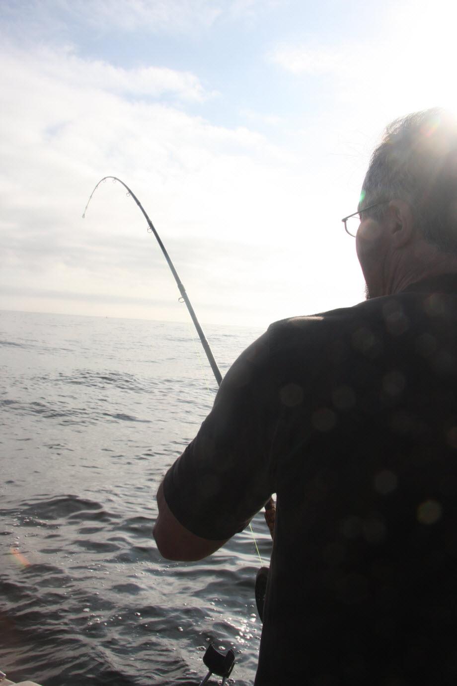 WestCoastFish4336