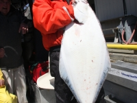 WestCoastFish3396