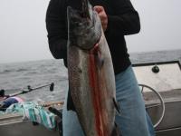 WestCoastFish3667