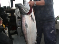 WestCoastFish3724