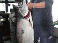 WestCoastFish3725