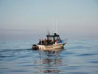 westcoastfishboat2-02