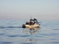 westcoastfishboat2-03