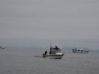 westcoastfishboat2-16