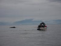 westcoastfishboat4-10