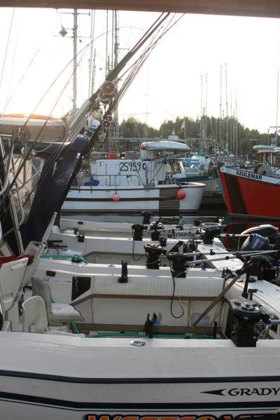 westcoastfishboat3-03