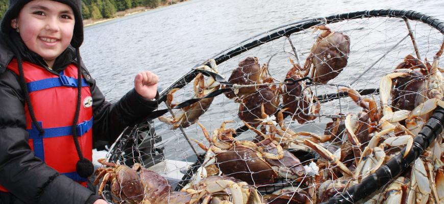 crabbing-slider
