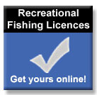 Recreational Fishing Licence